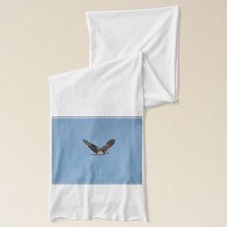 Gliding Osprey Scarf