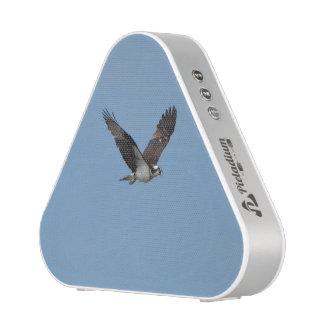 Gliding Osprey Speaker