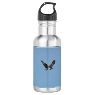 Gliding Osprey Stainless Steel Water Bottle