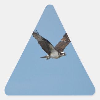 Gliding Osprey Triangle Sticker