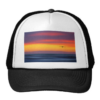 Gliding Out to Sea Mesh Hats