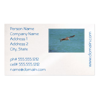 Gliding Pelican Business Card
