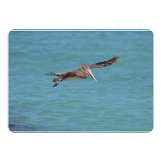Gliding Pelican Card
