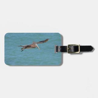 Gliding Pelican Luggage Tag