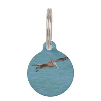 Gliding Pelican Pet ID Tag