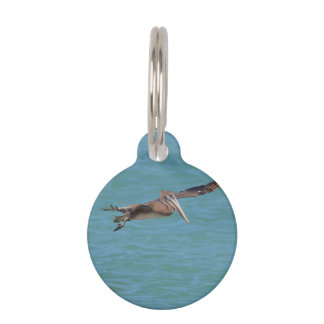 Gliding Pelican Pet Tag