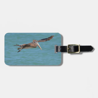 Gliding Pelican Tag For Luggage