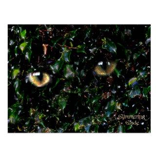 Glimmering Eyes in Glade Postcard