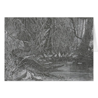 Glimpses of the Animate World - Alligators in Flor Card