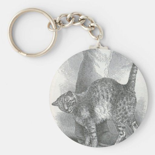 Glimpses of the Animate World - An Affectionate Ca Basic Round Button Keychain