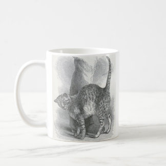Glimpses of the Animate World - An Affectionate Ca Classic White Coffee Mug