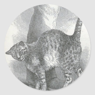 Glimpses of the Animate World - An Affectionate Ca Classic Round Sticker