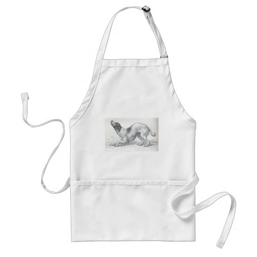 Glimpses of the Animate World - An affectionate Do Adult Apron