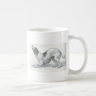 Glimpses of the Animate World - An affectionate Do Classic White Coffee Mug
