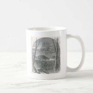 Glimpses of the Animate World - Beaver Dam Classic White Coffee Mug