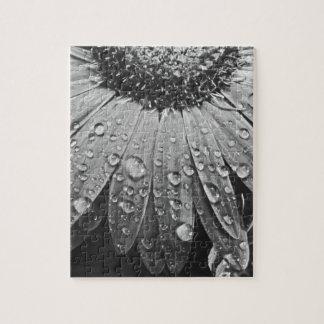 Glistening Rain Drops on Daisy Flower Puzzle