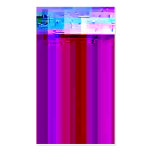 Glitched Video Screen Capture No. 1 Double-Sided Standard Business Cards (Pack Of 100)