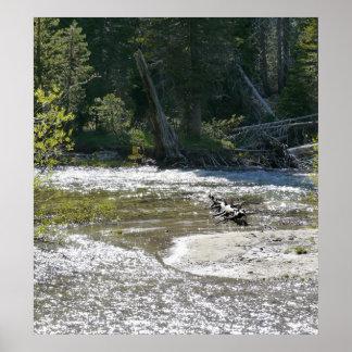 Glittering Creek Print