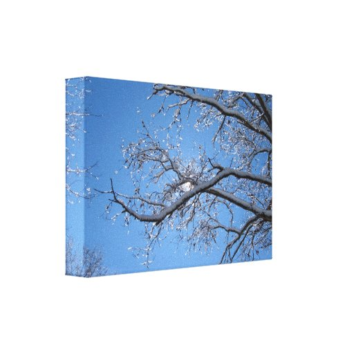 Glittering Ice and Snow Covered Trees Canvas Prints