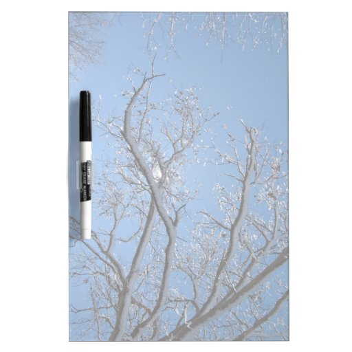 Glittering Ice and Snow Covered Trees Dry Erase Boards
