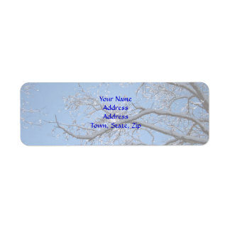 Glittering Ice and Snow Covered Trees Label