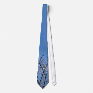 Glittering Ice and Snow Covered Trees Tie