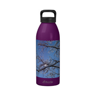 Glittering Ice and Snow Covered Trees Drinking Bottle