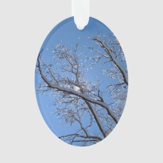 Glittering Ice Snow Covered Tree Ornament