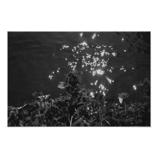 Glittering Water Poster