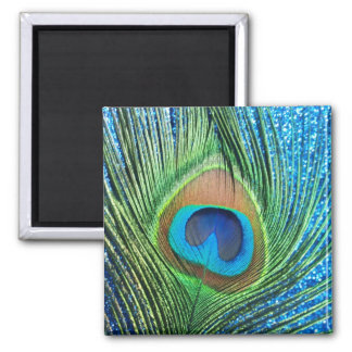 Glittery Blue Peacock Feather Still Life 2 Inch Square Magnet
