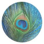 Glittery Blue Peacock Feather Still Life Plates