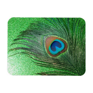 Glittery Green Peacock Feather Still Life Magnet
