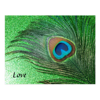 Glittery Green Peacock Feather Still Life Postcard