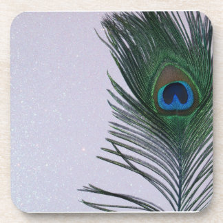Glittery White Peacock Feather Still Life Beverage Coasters