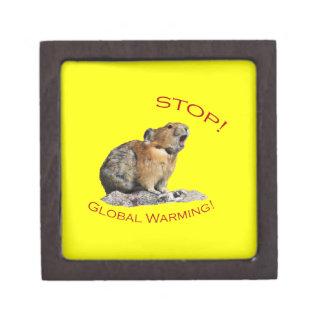 Global Warming Jewelry Box