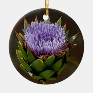 Globe Artichoke, Cynara Cardunculus, in flower. Ceramic Ornament