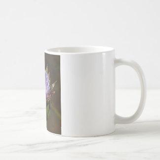 Globe Artichoke, Cynara Cardunculus, in flower. Coffee Mug