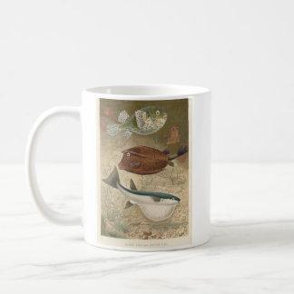 Globe Fish & Coffer Fish Bookstore Promo Coffee Mug