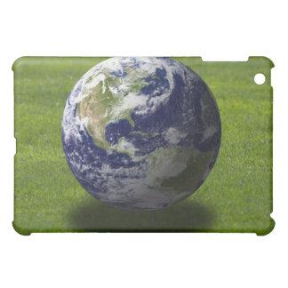 Globe on lawn 4 case for the iPad mini
