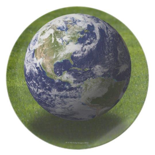 Globe on lawn 4 melamine plate