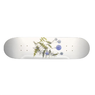 Globe Thistle Collection Skateboard Deck