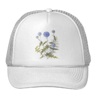 Globe Thistle Collection Trucker Hats