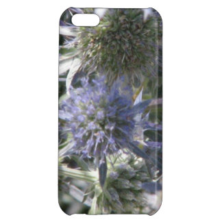 Globe Thistle Case For iPhone 5C