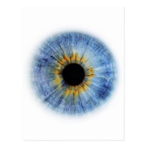 Globo del ojo azul postales