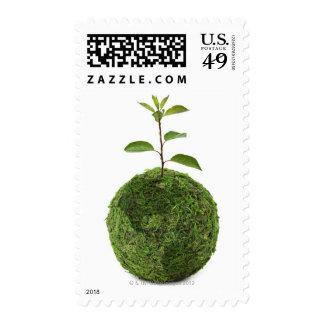 Globo verde y almácigo que muestran la protección sello