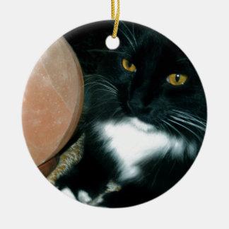 Globo y gato de la sal psíquicos - fotografía adorno navideño redondo de cerámica