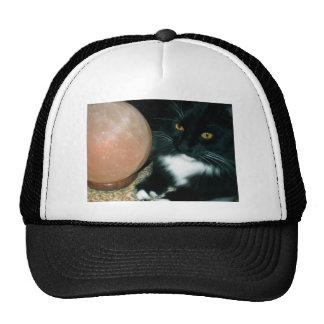 Globo y gato de la sal psíquicos - fotografía gorro