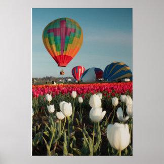 Globos y poster brillantes de los tulipanes