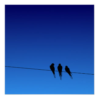 Glooming Blackbirds Silhouette on Wire Poster