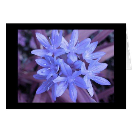 Gloria azul de la tarjeta de felicitación de la ni